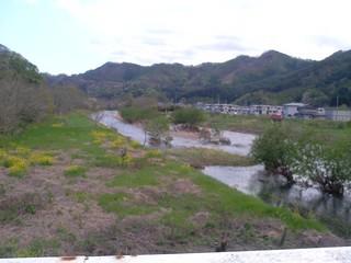 柾内橋から大槌川2012.05.04