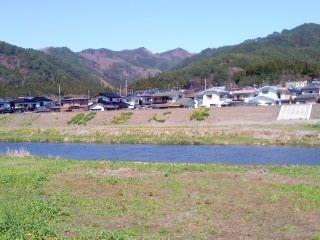 菜の花・河川敷7般若心経