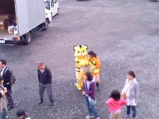 子供祭り・トラがいる!