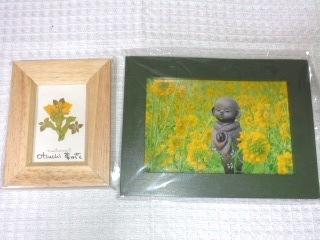 菜の花地蔵と押し花