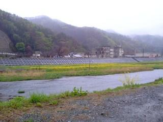 雨の日の葉の花・きらり付近河川敷